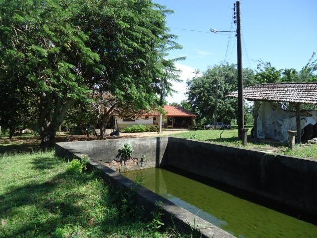Vendo Fazenda em Ceará Mirim - Foto 7