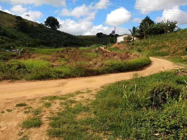 Fazenda com 180 Hectares a 8 km da Pista de Cortês-PE - Foto 9
