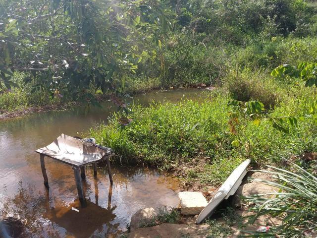 Fazenda com 180 Hectares a 8 km da Pista de Cortês-PE - Foto 11