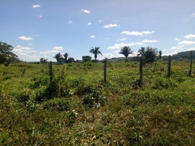 Vendo excelente fazenda / maranhão - Foto 7