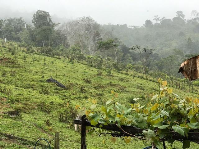 Vende-se Fazenda no Boqueirão de Itajuru - BA - Foto 2