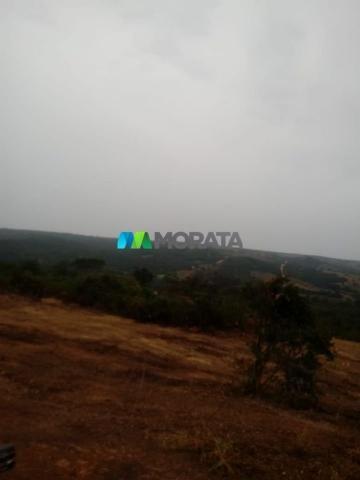 FAZENDA A VENDA - 143 hectares - BOM DESPACHO (MG) - Foto 7