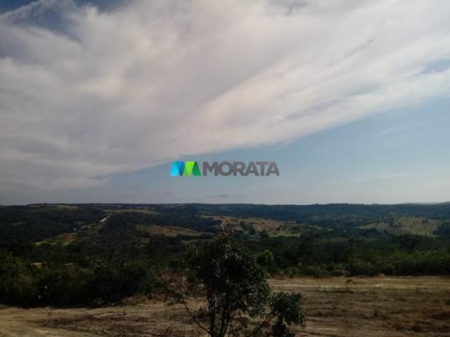 FAZENDA A VENDA - 143 hectares - BOM DESPACHO (MG) - Foto 3