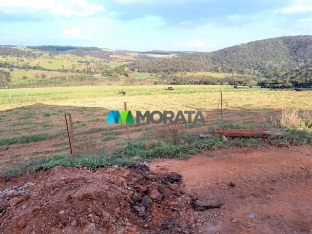 FAZENDA - 213 hectares - ONÇA DO PITANGUI (MG) - Foto 3