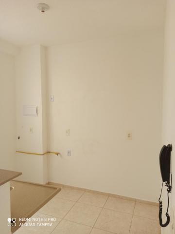 Apartamento para alugar com 2 dormitórios em Jardim nunes, Sao jose do rio preto cod:L7294 - Foto 5