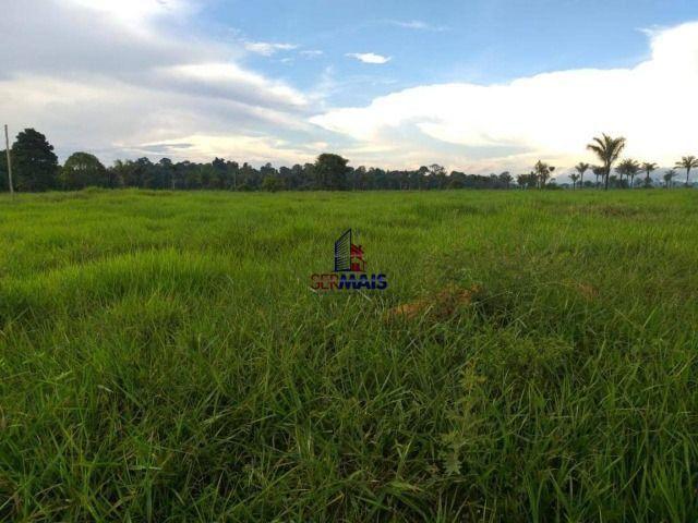Fazenda à venda, por R$ 2.645.000 - Zona Rural - Machadinho D'Oeste/RO - Foto 2