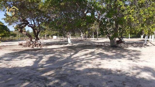 Chácara com 4 dormitórios à venda, 13800 m² por R$ 1.200.000,00 - Aquiraz - Aquiraz/CE - Foto 5