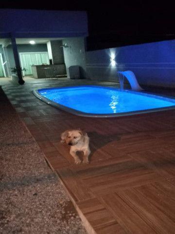 Casa à venda com 2 dormitórios em Inaja, Matinhos cod:CA0770 - Foto 13