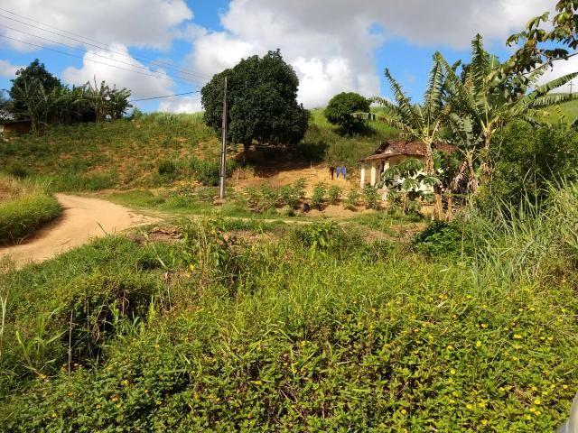 Fazenda com 180 Hectares a 8 km da Pista de Cortês-PE - Foto 12