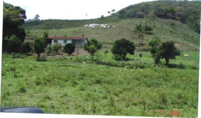 Fazenda 97 Alqs Na Região do Vale do Paraíba SP Negocio de oportunidade - Leia o anúncio - Foto 2