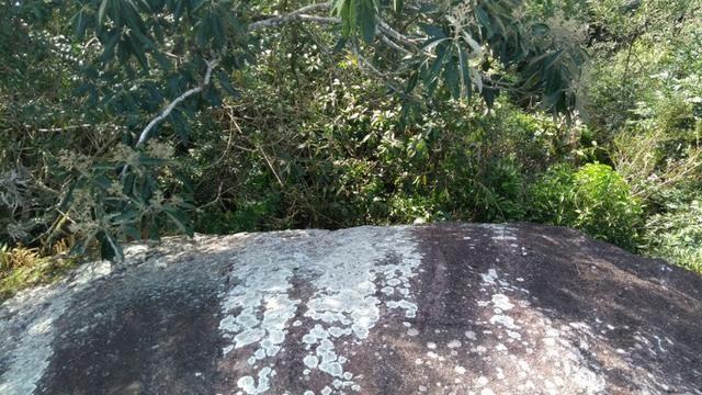 Chacara pedra preta - Foto 6