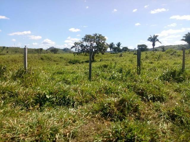 Vendo excelente fazenda / maranhão - Foto 8