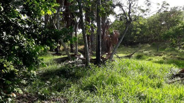 Sitio 16.8 Hac/Permuta Por Imovel Em Jequitai Ou Montes Claros - Foto 8