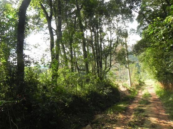 Agt-ótimo terreno para construir chacará na região de Mairiporã - Foto 6