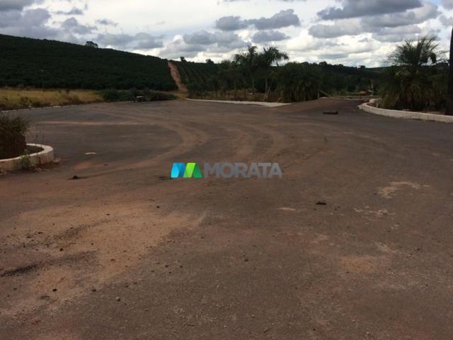 FAZENDA CAFÉ - 176,66 hectares - REGIÃO MACHADO (MG) - Foto 11