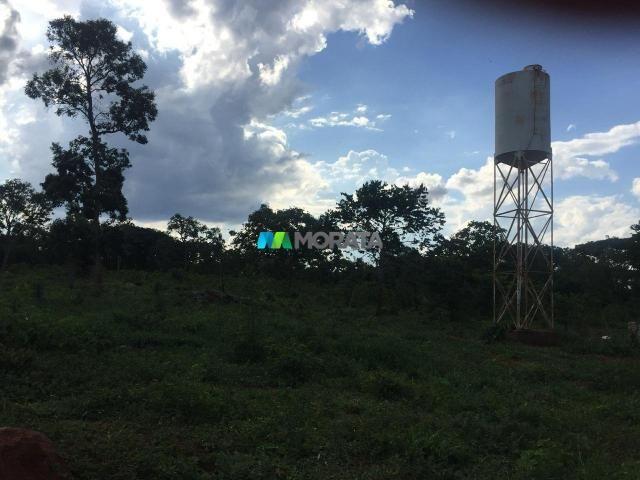 FAZENDA À VENDA - 17.70 HECTARES - SETE LAGOAS (MG) - Foto 3
