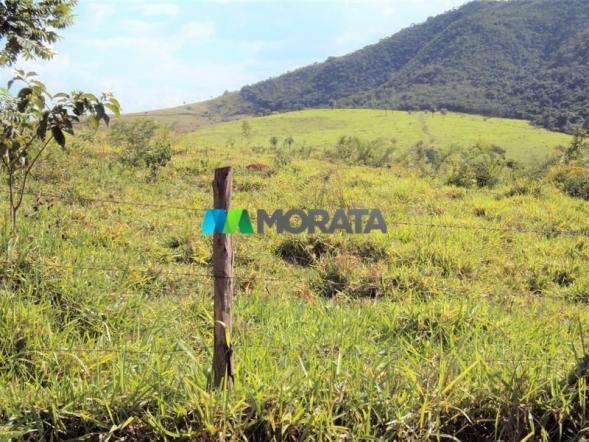 FAZENDA - 334 hectares - PARÁ DE MINAS (MG) - Foto 16