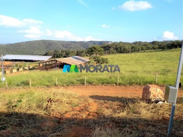 FAZENDA - 213 hectares - ONÇA DO PITANGUI (MG) - Foto 17