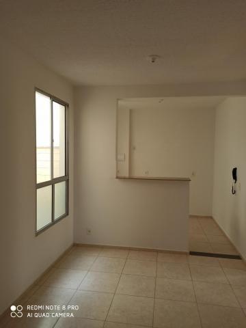 Apartamento para alugar com 2 dormitórios em Jardim nunes, Sao jose do rio preto cod:L7294 - Foto 4