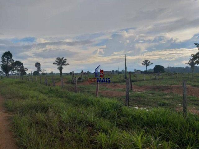 Fazenda à venda, por R$ 2.645.000 - Zona Rural - Machadinho D'Oeste/RO - Foto 3