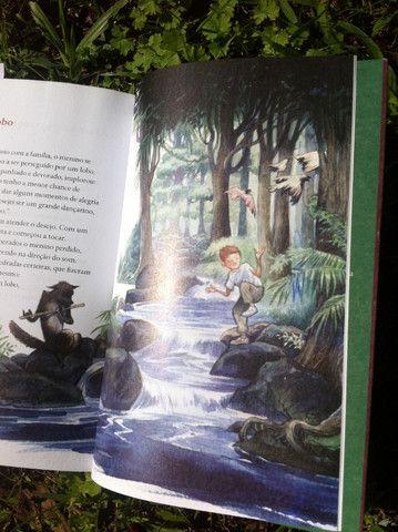 Fábulas -Histórias de Esopo e La Fontaine para o nosso tempo - Foto 2
