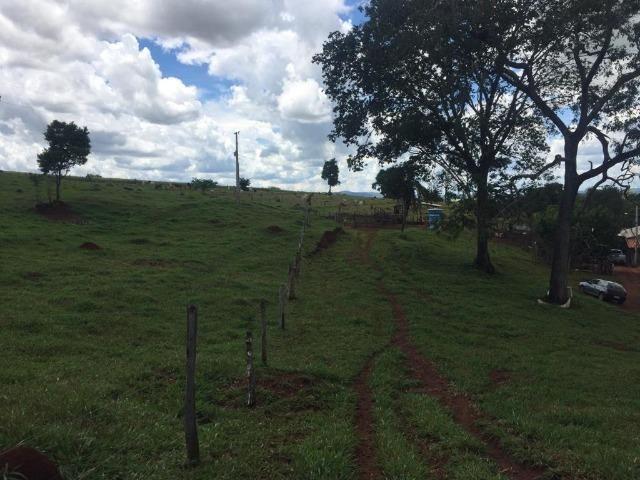 Fazenda com 5,5 Alqueires, Toda Formada, Pontalina Goiás, - Foto 18