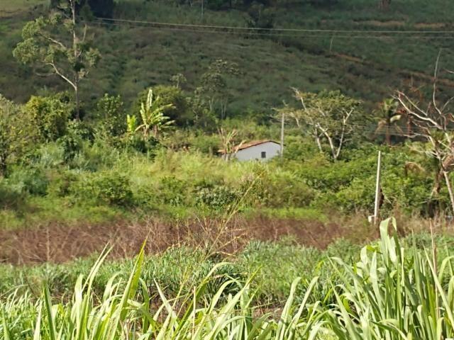Fazenda com 180 Hectares a 8 km da Pista de Cortês-PE - Foto 15