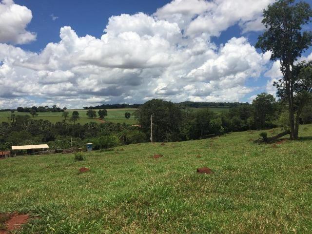 Fazenda com 5,5 Alqueires, Toda Formada, Pontalina Goiás, - Foto 12