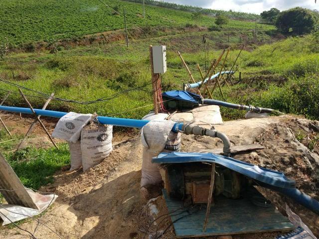 Fazenda com 180 Hectares a 8 km da Pista de Cortês-PE - Foto 17