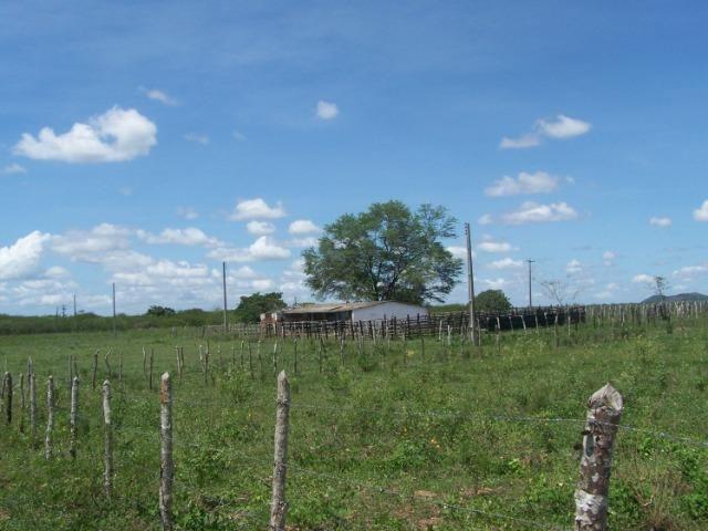 Vendo Fazenda em Poço Branco - Foto 2