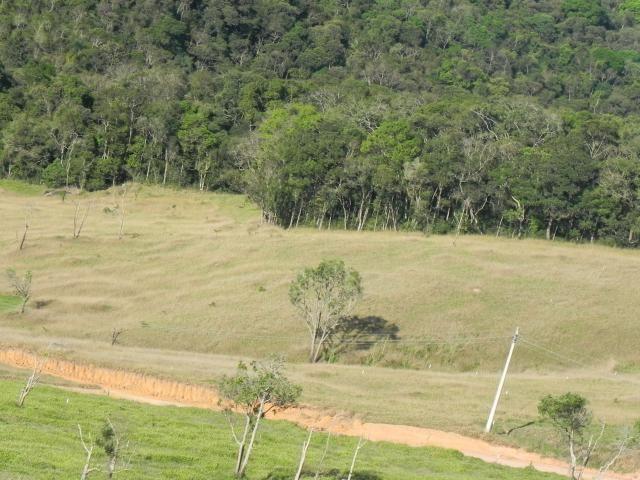 Agt-ótimo terreno para construir chacará na região de Mairiporã - Foto 15