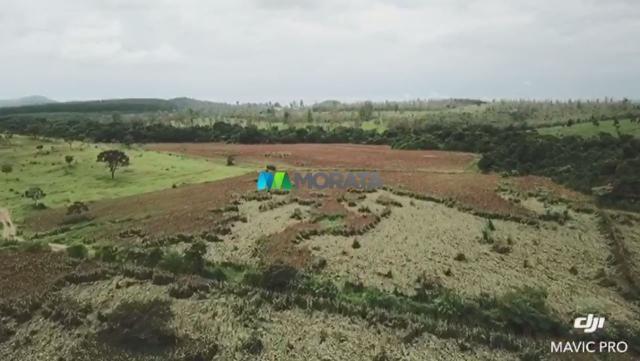 FAZENDA A VENDA - 86 hectares - REGIÃO SETE LAGOAS (MG) - Foto 4