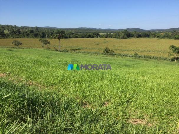 FAZENDA A VENDA - 86 hectares - REGIÃO SETE LAGOAS (MG)