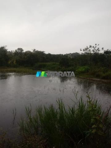 FAZENDA A VENDA - 143 hectares - BOM DESPACHO (MG) - Foto 6