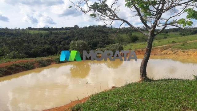 FAZENDA À VENDA - 150 HECTARES - PITANGUI (MG) - Foto 5