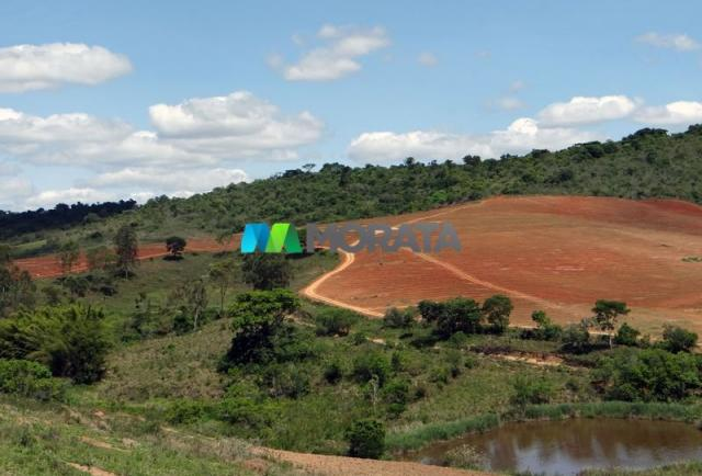 FAZENDA - 329,12 hectares - BOM SUCESSO (MG) - Foto 2