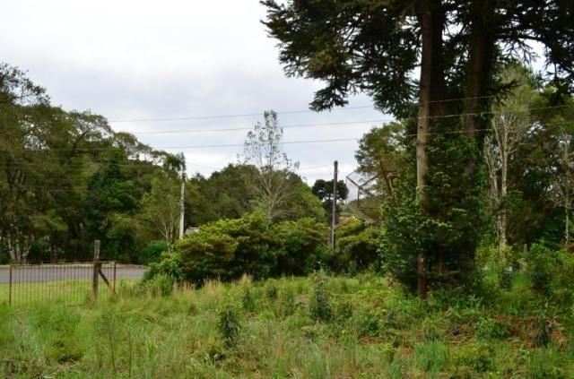 Terreno à venda, 1049 m² por R$ 450.000,00 - Villágio - Gramado/RS - Foto 9
