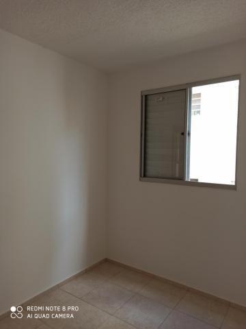 Apartamento para alugar com 2 dormitórios em Jardim nunes, Sao jose do rio preto cod:L7294 - Foto 13