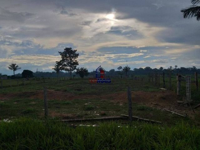 Fazenda à venda, por R$ 2.645.000 - Zona Rural - Machadinho D'Oeste/RO - Foto 5
