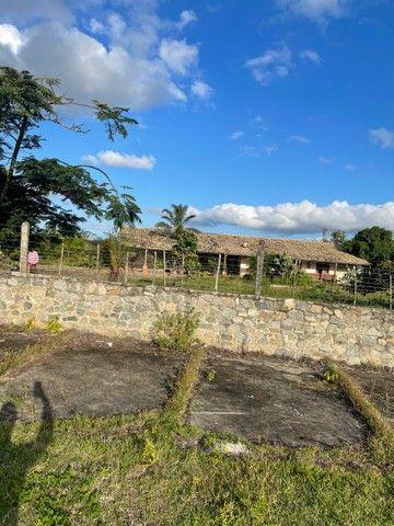 Chácara - Fazenda 40 tarefas - Foto 2