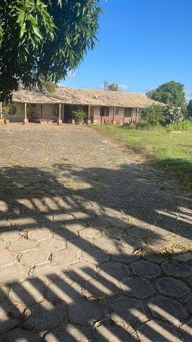 Chácara - Fazenda 40 tarefas - Foto 5