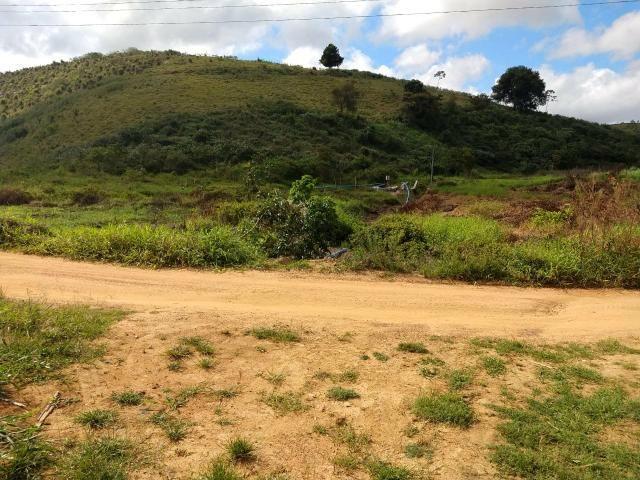 Fazenda com 180 Hectares a 8 km da Pista de Cortês-PE - Foto 20