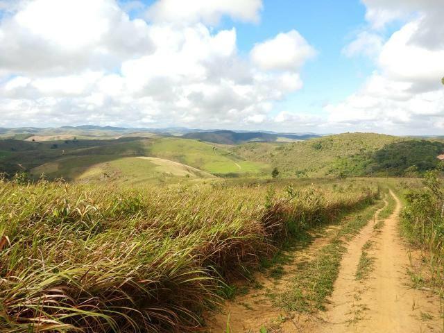 Fazenda com 180 Hectares a 8 km da Pista de Cortês-PE - Foto 19