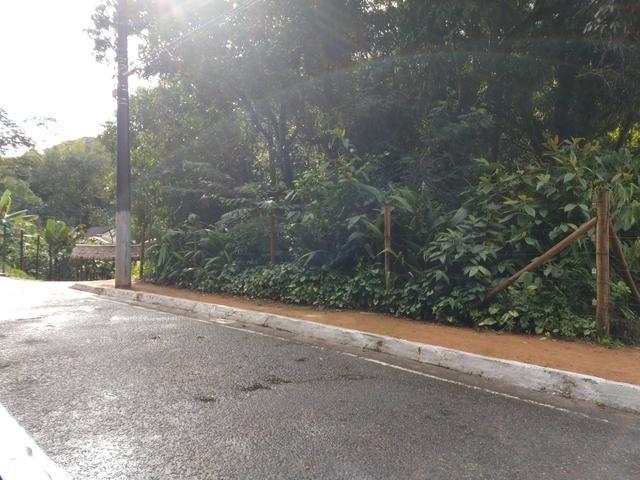 Lote 1.300m2 na Avenida Principal de Santa Isabel em Domingos Martins - Foto 6