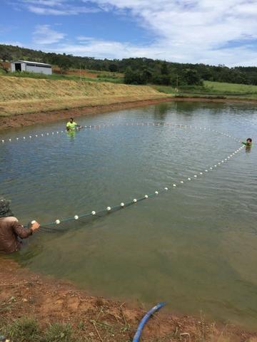 Sítio de 29 hectares com piscicultura formada em Alexânia-GO - Foto 20