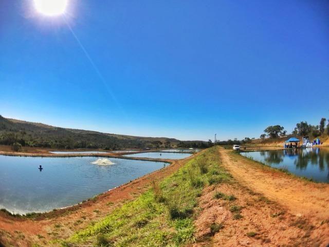 Sítio de 29 hectares com piscicultura formada em Alexânia-GO - Foto 19
