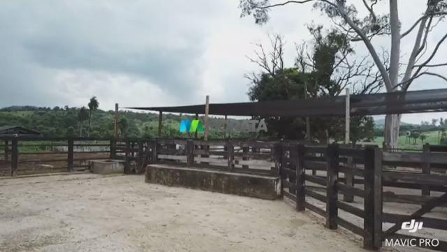 FAZENDA A VENDA - 86 hectares - REGIÃO SETE LAGOAS (MG) - Foto 7