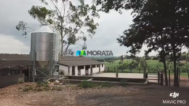 FAZENDA A VENDA - 86 hectares - REGIÃO SETE LAGOAS (MG) - Foto 10
