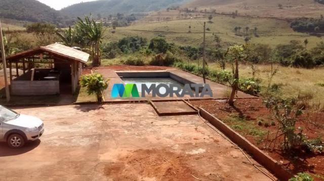 FAZENDA - 334 hectares - PARÁ DE MINAS (MG) - Foto 12