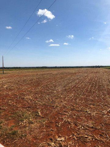 Fazenda Extra 33,5 Alqueires   30 na lavoura   Oport. Única  - Foto 3